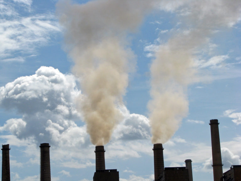 Court Rules in Favor of Environmental Groups on Hazardous Air Pollution from Power Plants