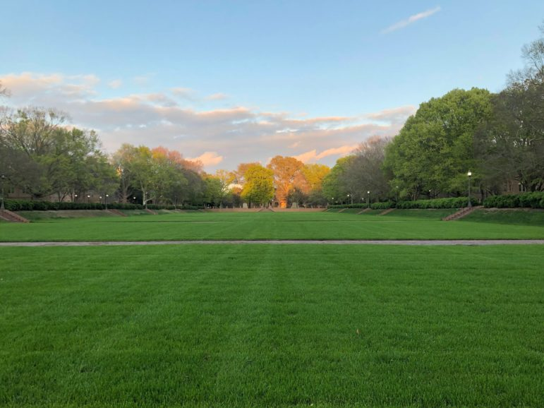 freshly mowed green grass quad of university with fall colors in background and low sun